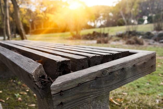 Скамейка в парке в солнечный день