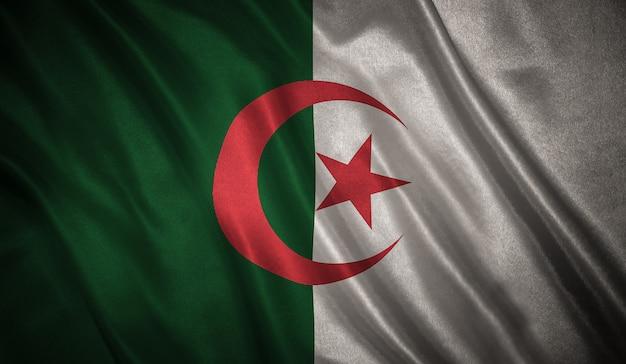 アルジェリアの背景の旗
