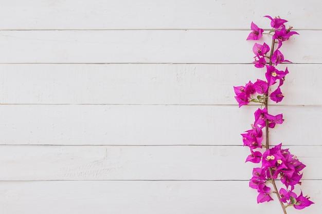 白い木の背景にピンクの花。フラットレイ、上面図