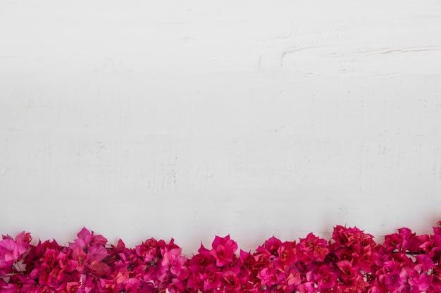 白い木の背景に花。空きスペース