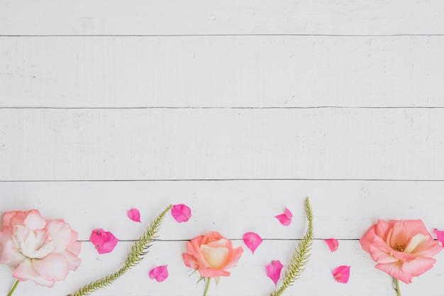白い木の背景の上にバラ