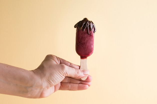 Мороженое палочки из фруктов с шоколадом
