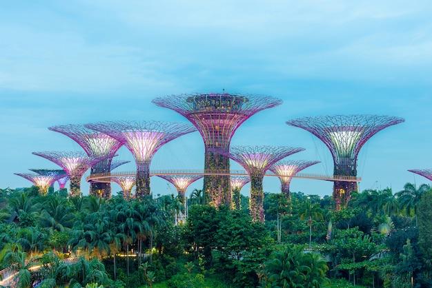 シンガポールのスーパーツリーグローブ