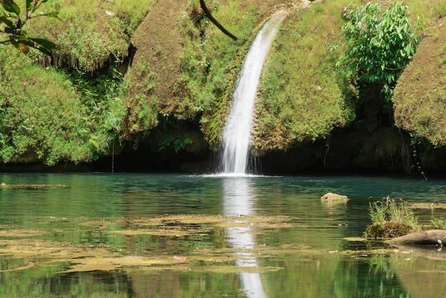 森の中の小さな滝