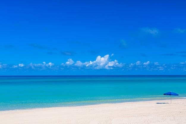 熱帯のビーチで青いビーチパラソル