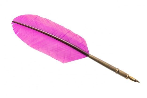 ビンテージピンク羽ペンをクローズアップ分離。文学のコンセプト。