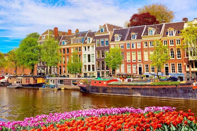 青い空と伝統的な古い家屋と夏のアムステルダムの運河の街並みの景色。手前に色とりどりの春のチューリップの花壇。