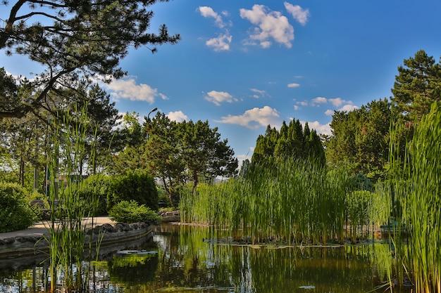 晴れた夏の日、ハンガリー、ブダペストのマルギット島にある日本庭園