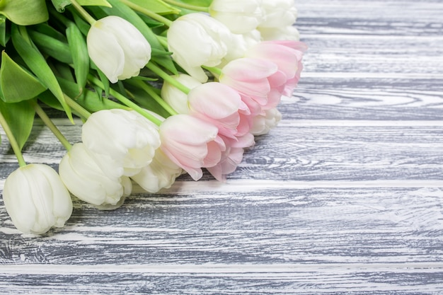 Розовые и белые очень нежные тюльпаны на белом, сером деревянном му