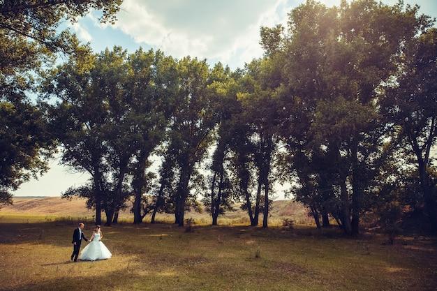 結婚式のカップルが森を歩いています。