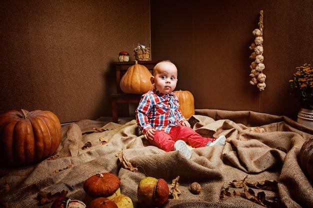 チェックのシャツと季節野菜の部屋に座っている赤いズボンのかわいい赤ちゃん