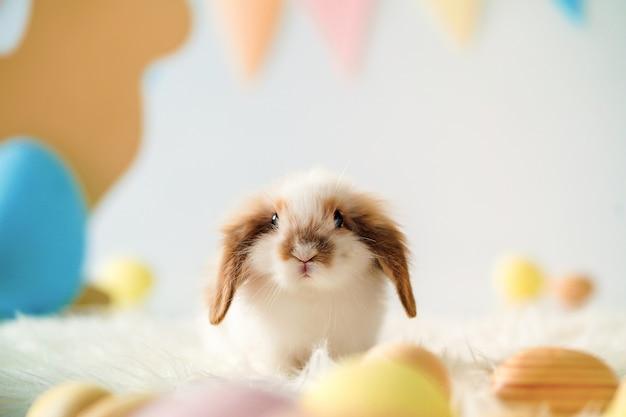 Кролик в пасхальном зале с расписными яйцами