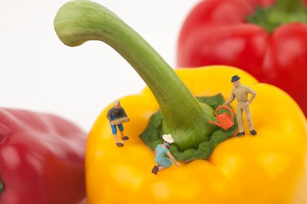 Миниатюрные фермеры собирают сладкий перец