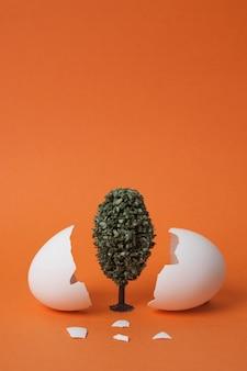 壊れた卵の殻の間の木