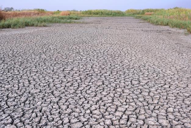 ひび割れた乾燥河床