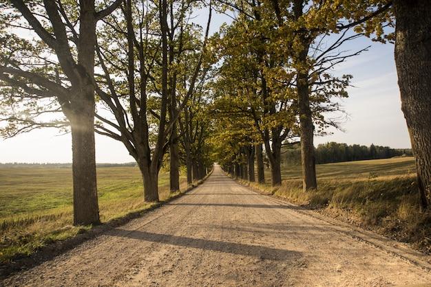 Осенняя панорама. пейзажный вид. осенний солнечный день