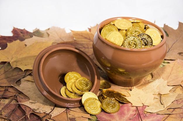 Изолированный горшок с золотыми монетами