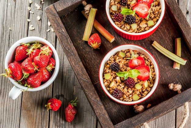 Здоровый завтрак. гранола из овсянки крошится с ревенем, свежей клубникой и ежевикой, семенами и мороженым в печеных мисках, украшенных мятой, на деревянном деревенском столе в старом подносе, вид сверху