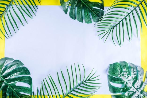 熱帯のヤシとモンステラの葉の背景