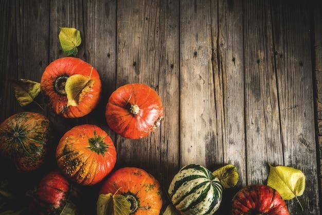 Осенние тыквы фон