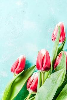 お祝いグリーティングカードの背景明るい青の背景に新鮮な春のチューリップの花