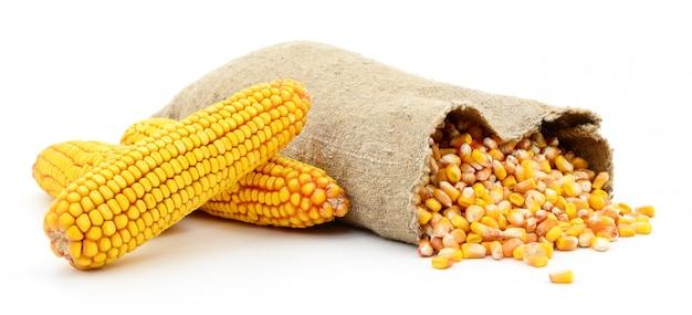 Мешок с кукурузными зернами.