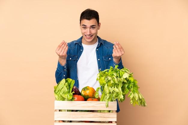 お金のジェスチャーを作るベージュの壁に分離されたボックスで採れたての野菜農家