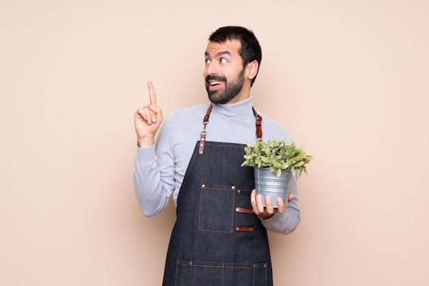 指を持ち上げながらソリューションを実現しようとしている植物を保持している男
