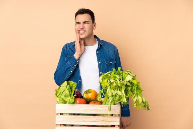 歯痛でベージュの壁に分離されたボックスで採れたての野菜を持つ農家