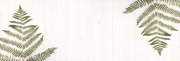 白い木製のテーブルにバナー緑シダの葉