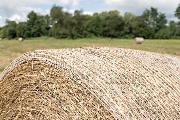 後ろに木がある畑で収穫された干し草の丸いベールのクローズアップ。セレクティブフォーカス