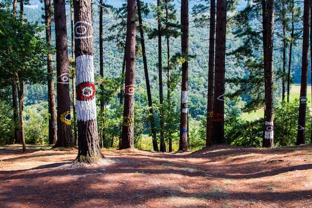 アグスティンイバロラによって作成されたオマの森。バスク地方のビスカヤ(ビスケー)州のゲルニカ近くのサンティマニネの入り江に隣接しています。
