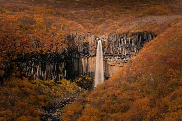 南アイスランドのスカフタフェットル国立公園のスヴァルティフォスの滝。