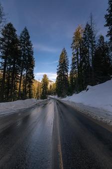 カリフォルニアのセコイア国立公園を通る道路