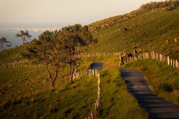 海岸の隣の山を通る道路。