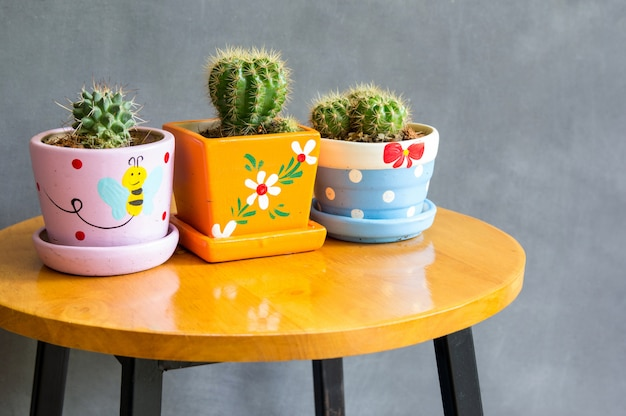 テーブルの上のポット装飾のサボテンの植物