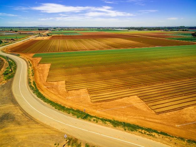 緑と茶色のフィールドと明るい夏の日の曲がりくねった道の空撮