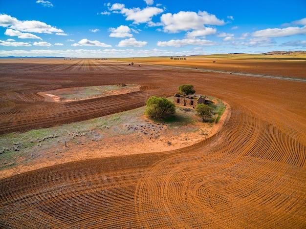 南オーストラリア州ホワイトヤーコウィの古い建物の遺跡周辺の耕作フィールド