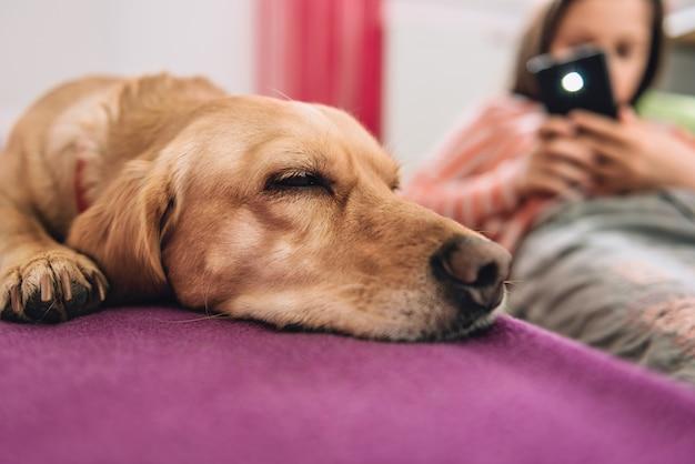 犬の写真を撮る女の子