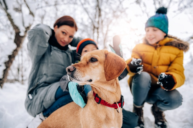 Собака наслаждается на улице на снегу с его владельцами