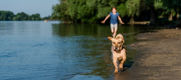 犬とビーチに沿って走っている少女