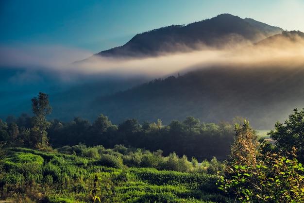 山と朝の霧
