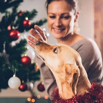 犬を抱きしめるとクリスマスツリーを飾る女性