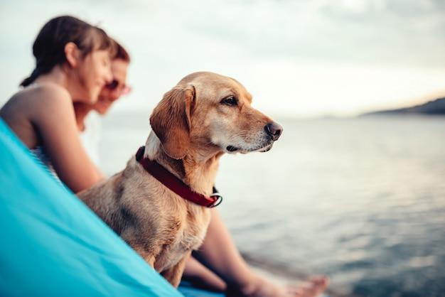 Собака сидит внутри пляжной палатки с хозяевами у моря