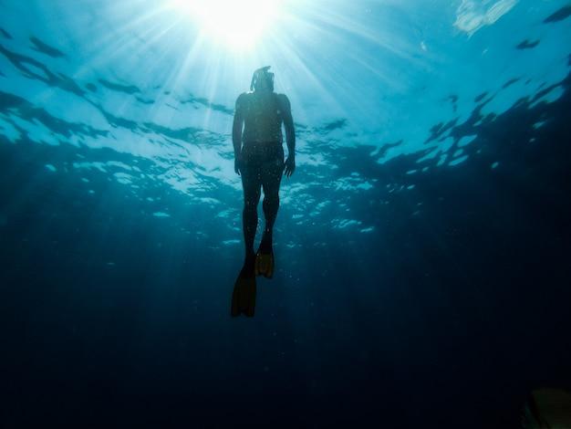 ダイバーが海から出現