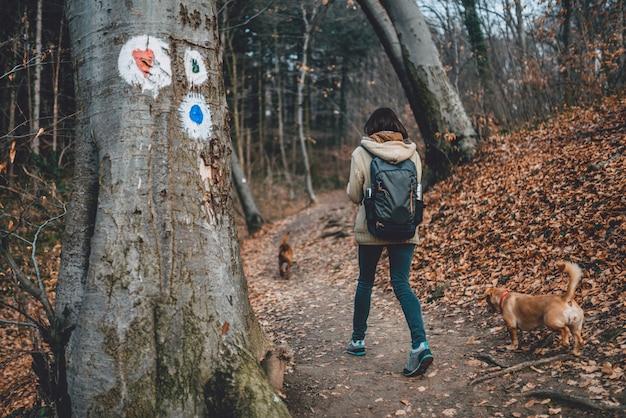 森林歩道でハイキング犬を持つ女性