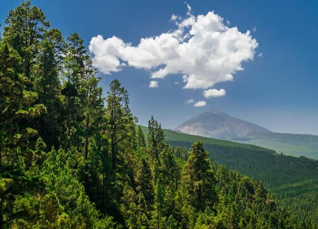 テイデ火山とラオロタバ松林