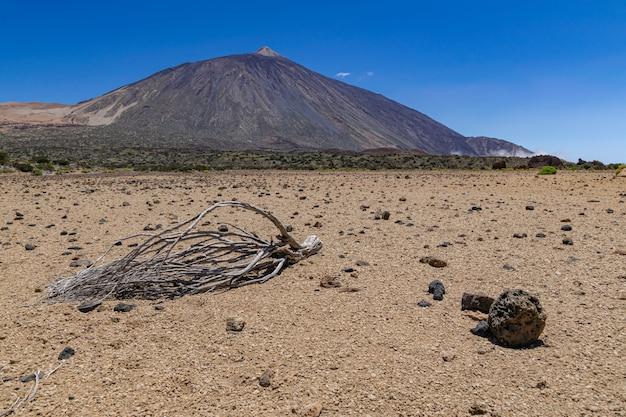 Национальный парк тейде вулканический, с сухими ветвями на засушливой поверхности, тенерифе, канарские острова, испания