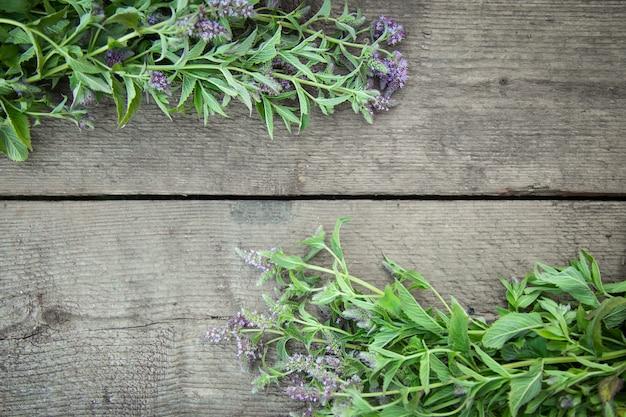 木製の背景にフレームハーブ開花ペパーミント。薬草。ビンテージの田舎のスタイル。平干し。