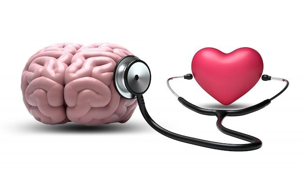 白い背景の上の聴診器で心リスニング脳